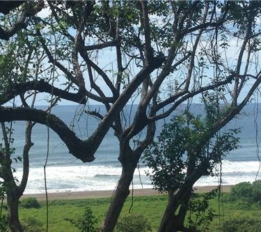 Playa Ostional, NIMBU Reserve, Nosara, Guanacaste, Costa Rica.