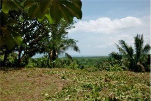 Ocean View Lot in Los Suenos Biological Reserve