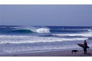 3 acres, Marbella Surf Development, 2 lots!