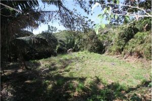 Affordable Las Huacas Lot in a serene setting
