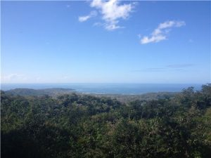 12.5 Acres in San Juan Mountain w/ huge ocean view