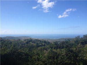 12.5 Acres in San Juan Mountain w/ huge ocean view