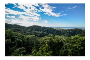 1.7 Acre Ocean View Lot in Desired Nosara Area