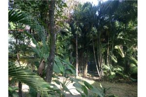 Small Lot, Pristine Beach Location, House/Business – SOLD BY REMAX