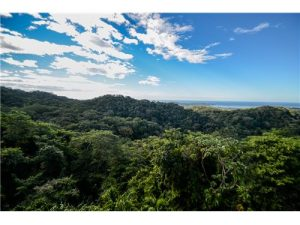 San Juan Mountain Development Property – 22 Hectares with Roads, 6 Building Pads, Water & Electric