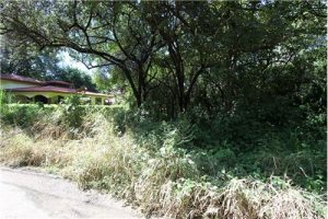 Playa Pelada Lot on Main Street- SOLD