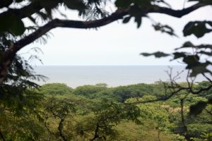 Large Development or Private Home Ocean View Land Parcel in Playa Pelada – SOLD