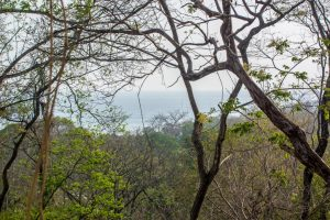 High Elevation Building Lot in A Section of Pelada – SOLD
