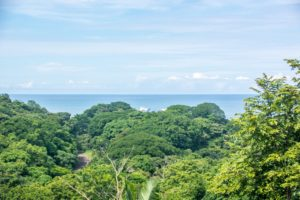 Compound Style View Property on Private Road Surrounded by Nature – SOLD