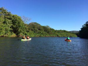 32. Kayaks