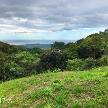 Bosque Verde, Nosara Guanacaste, Costa Rica.