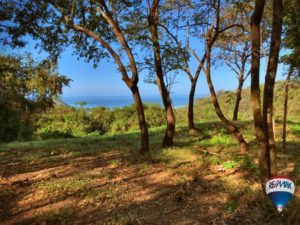 Ocean View LOT With Two Building Sites And Short Walk To The Beach