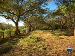 Playa Ostional Commercial Lot – Walk to Beach