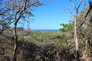 Elevated Pelada Double Lot – Nearly 1 Acre with Ocean Views – ONLY TOP LOT LEFT