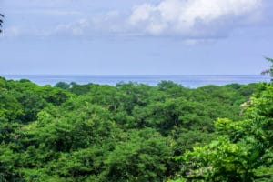 Lowest Priced Ocean View Lot in Pelada
