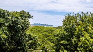Only Ocean View Lot in North Guiones