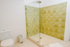 batch_Patio View Bathroom