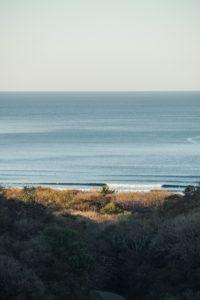 batch_Surf Check