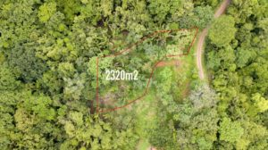 Jungle View EE Lot – Las Huacas