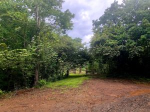 Over 4 Acres of Beautiful San Juanillo Land- FIRE SALE