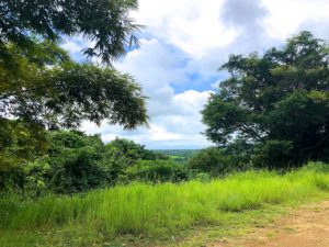 Lot G Costa Rica Yoga Spa – Giant Lot with Ocean Views