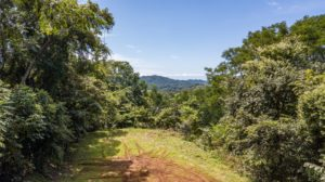 2 Acre Building View Lot Surrounded by Nature