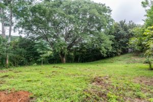 Building Lot with Natural Surroundings and Privacy